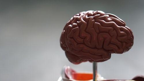 Metoda VAK poveča možgansko kapaciteto pri otrocih