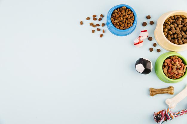 Vrhunska hrana za pse dobro vpliva na zdravje hišnega ljubljenčka